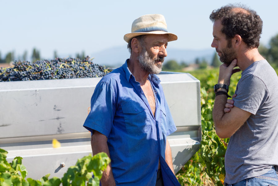 Jean David et Jean-Luc Auffret dans les vignes